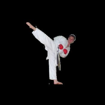 Karate ab 6 Jahren Trainers Jochen Wiesler